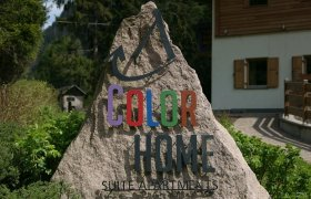 Color Home Suite Apartments - Val di Fiemme-1
