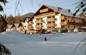 Hotel Sole - Val di Fiemme-1