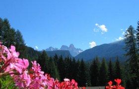Hotel Sole - Val di Fiemme-2